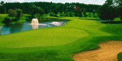 The International Golf Club